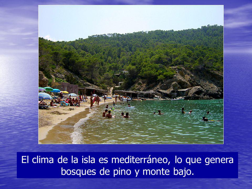El clima de la isla es mediterráneo, lo que genera bosques de pino y monte bajo.