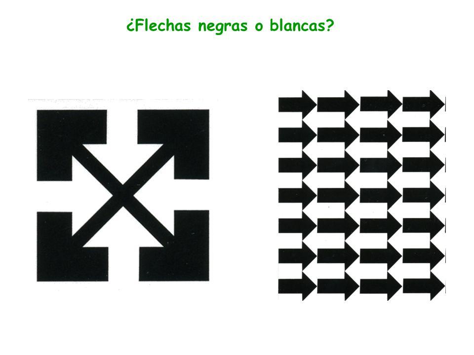 Leyes de la percepción Cuando dos campos tiene la misma línea límite común, es la figura la que adquiere más importancia. Ley de figura-fondo Aunque,