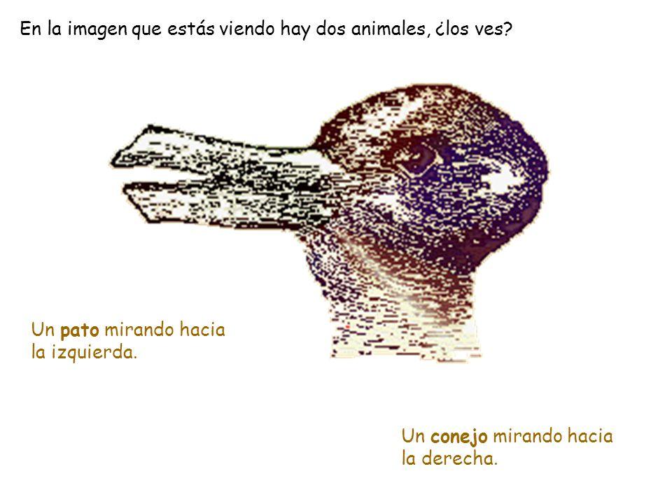 Aquí vemos la imagen de un cura rezando. Pero, ¿qué pasaría si le dieras la vuelta? Que en lugar de ver al cura, verías la cara de un cosaco.