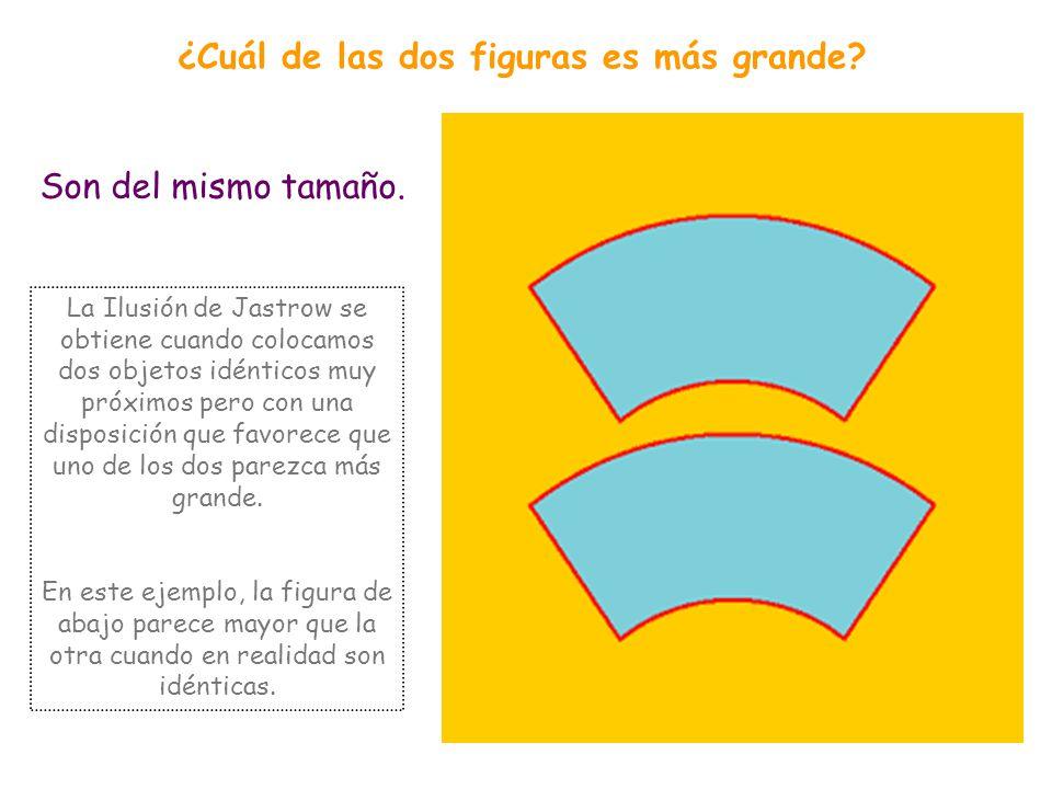 Tienen la misma longitud. ¿Cuál de las dos líneas horizontales es más larga? En la ilusión de Muller-Lyer dos segmentos de igual longitud ven alterada