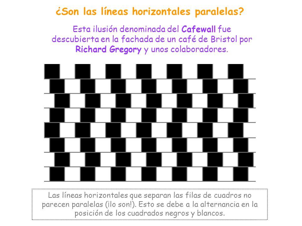 DIRECCIÓN - FORMA Se trata de todas aquellas ilusiones ópticas en las que las líneas o formas se perciben distorsionadas o distintas de como son en re