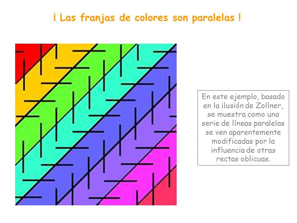 ¿Espirales o círculos? En este caso la disposición de los cuadrados blancos y negros nos induce a pensar que vemos una espiral, pero comprobarás que s