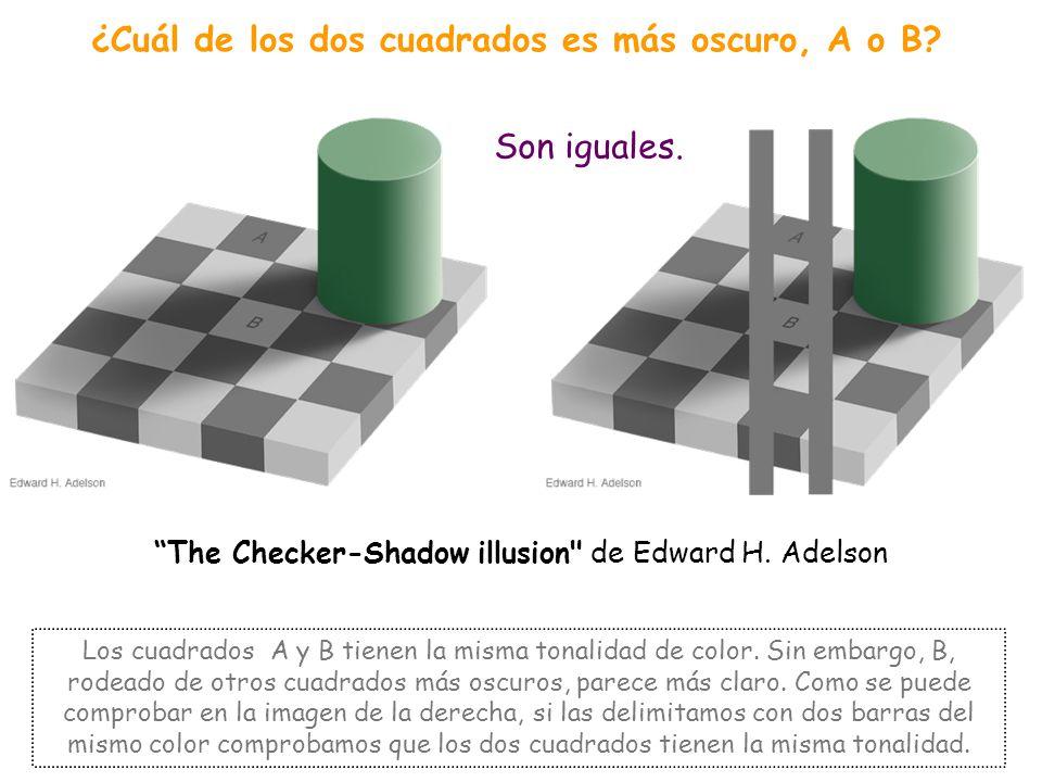 BRILLO - COLOR En esta categoría encontramos ilusiones en las que objetos del mismo color, parecen diferentes, en función de los colores que tienen al