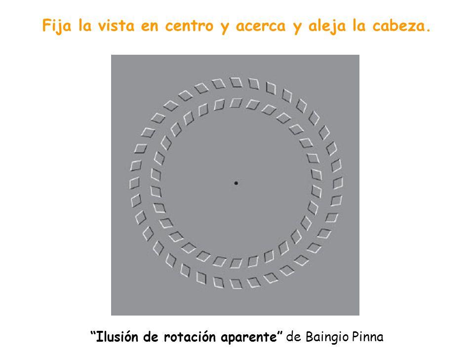 MOVIMIENTO Como tantos otros fenómenos de la visión, llamados ilusiones ópticas, siguen sin descifrarse los que producen sensación de movimiento, cuan