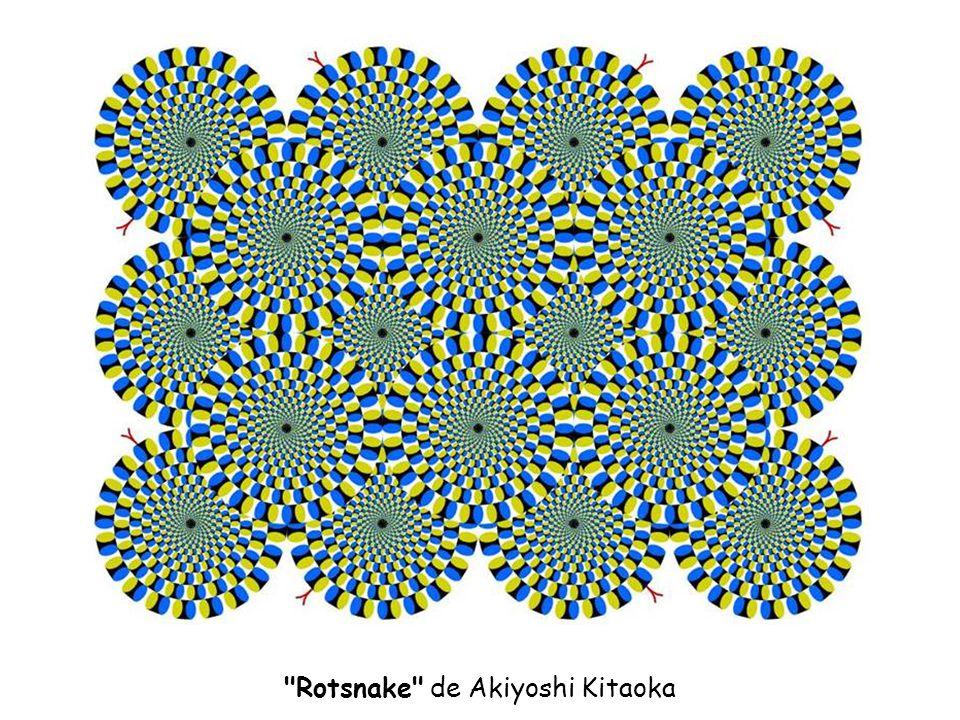 Ilusión de rotación aparente de Baingio Pinna Fija la vista en centro y acerca y aleja la cabeza.