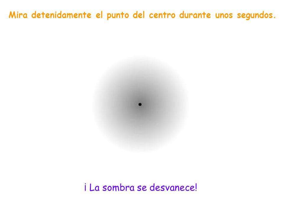 Fija la mirada en la cruz negra del centro durante 30 segundos. Los puntos de color lila van desapareciendo por turnos. Si uno se fija en la cruz en e