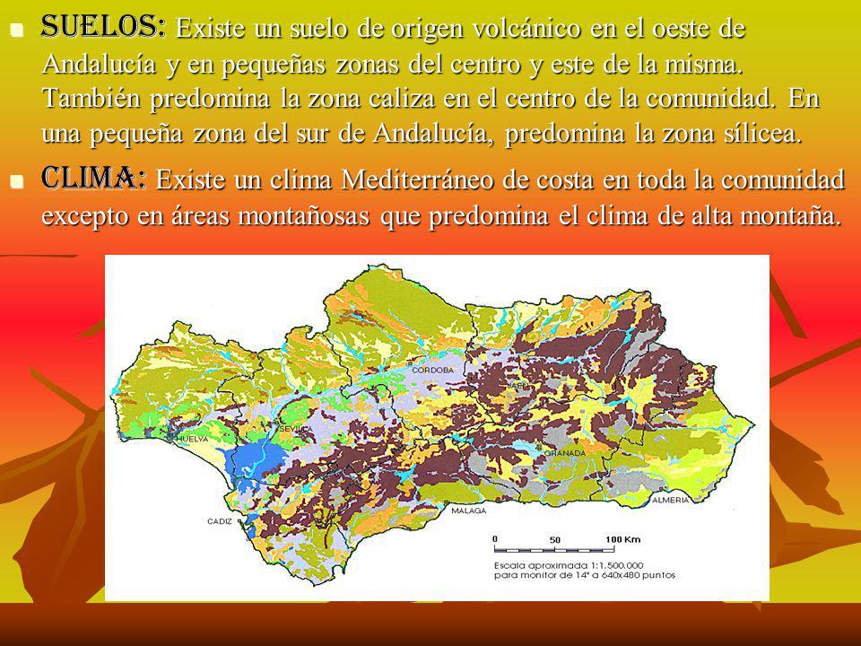 Guadalquivir.Mulhacén 3481m. Extensión: 87.591 km2.
