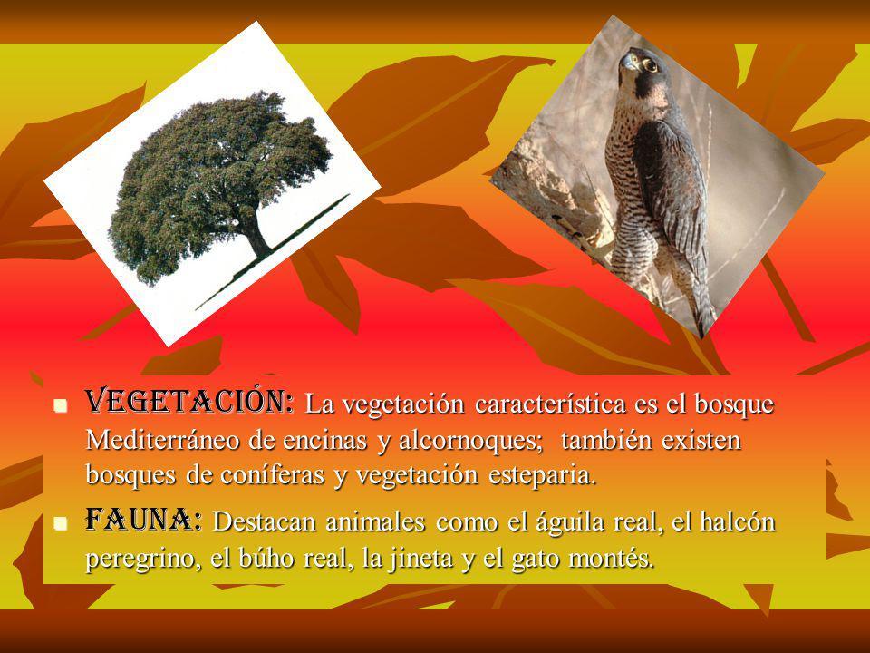 Suelos: Existe un suelo de origen volcánico en el oeste de Andalucía y en pequeñas zonas del centro y este de la misma.