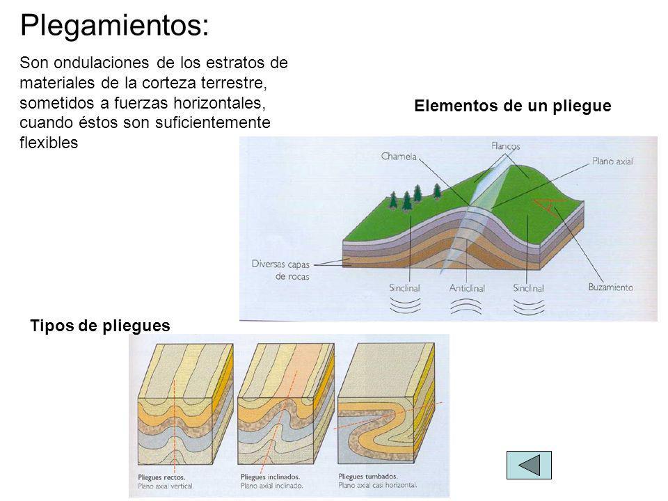 Elementos de un pliegue Tipos de pliegues Plegamientos: Son ondulaciones de los estratos de materiales de la corteza terrestre, sometidos a fuerzas horizontales, cuando éstos son suficientemente flexibles