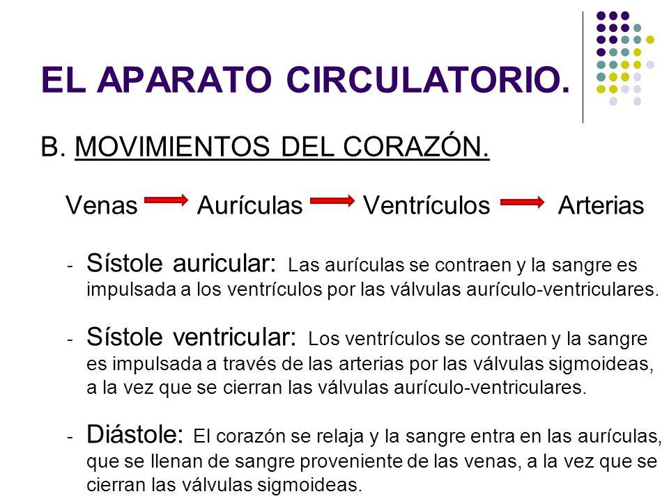 B. MOVIMIENTOS DEL CORAZÓN. Venas Aurículas Ventrículos Arterias - Sístole auricular: Las aurículas se contraen y la sangre es impulsada a los ventríc