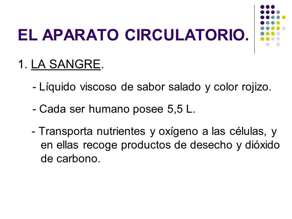 EL APARATO CIRCULATORIO. 1. LA SANGRE. - Líquido viscoso de sabor salado y color rojizo. - Cada ser humano posee 5,5 L. - Transporta nutrientes y oxíg