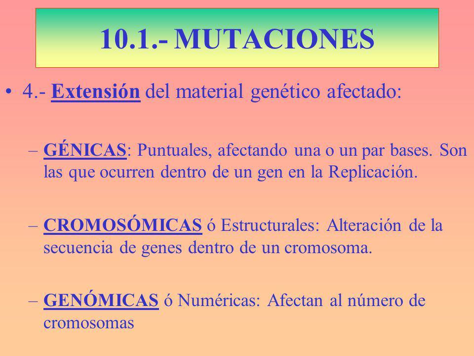 4.- Extensión del material genético afectado: –GÉNICAS: Puntuales, afectando una o un par bases.