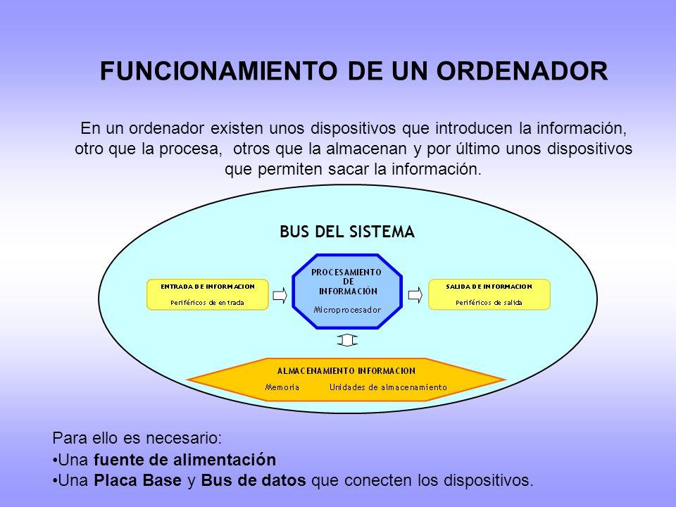 FUNCIONAMIENTO DE UN ORDENADOR En un ordenador existen unos dispositivos que introducen la información, otro que la procesa, otros que la almacenan y