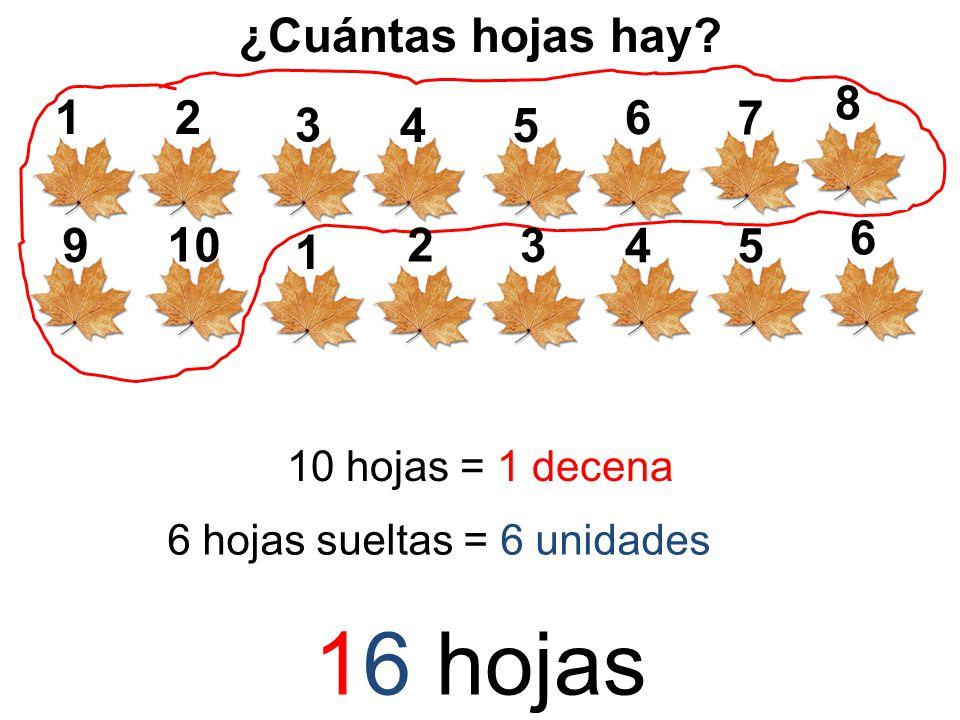 ¿Cuántas hojas hay? 12 5 3 4 6 7 8 9 10 hojas = 1 decena 1 2 5 3 4 6 6 hojas sueltas = 6 unidades 16 hojas
