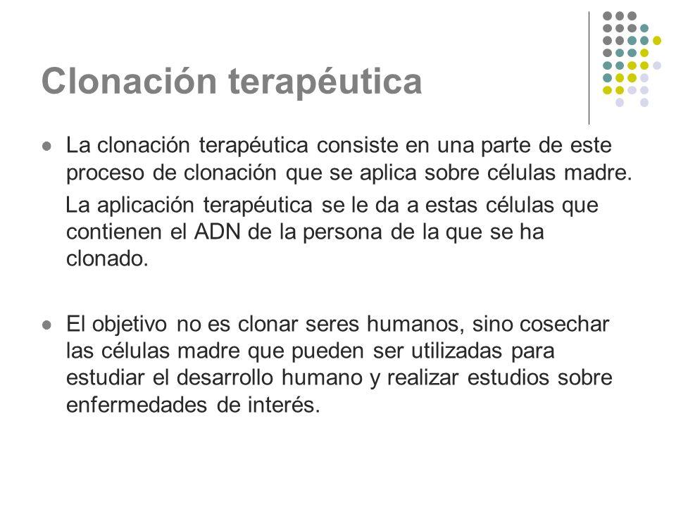 Clonación terapéutica La clonación terapéutica consiste en una parte de este proceso de clonación que se aplica sobre células madre. La aplicación ter