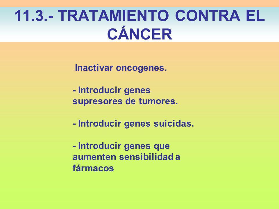11.3.- TRATAMIENTO CONTRA EL CÁNCER - Inactivar oncogenes.
