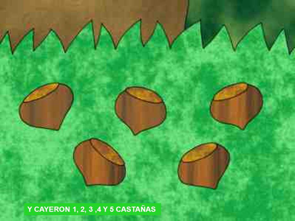 Y CAYERON 1, 2, 3,4 Y 5 CASTAÑAS