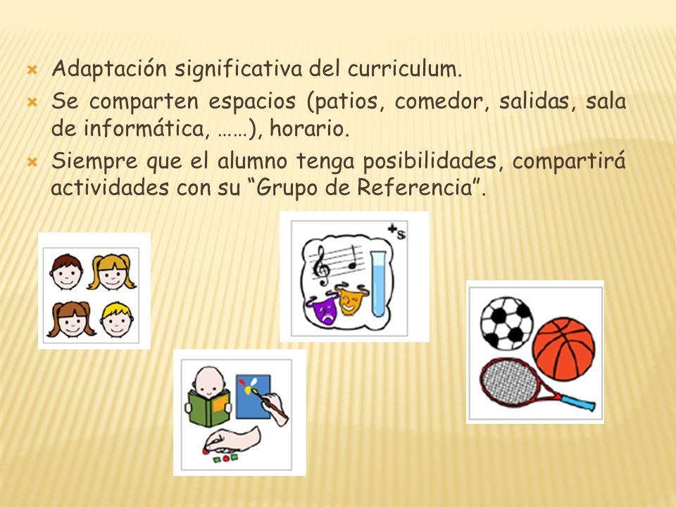 Adaptación significativa del curriculum. Se comparten espacios (patios, comedor, salidas, sala de informática, ……), horario. Siempre que el alumno ten