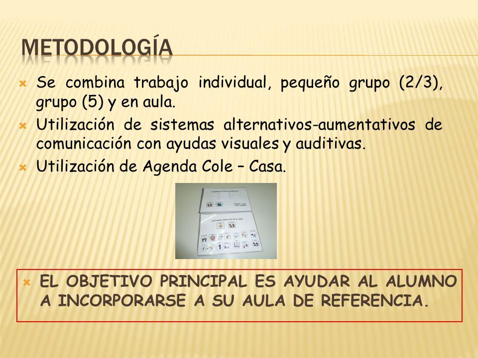Se combina trabajo individual, pequeño grupo (2/3), grupo (5) y en aula. Utilización de sistemas alternativos-aumentativos de comunicación con ayudas