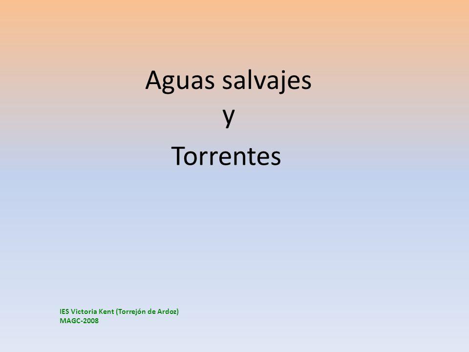 Aguas salvajes y Torrentes IES Victoria Kent (Torrejón de Ardoz) MAGC-2008