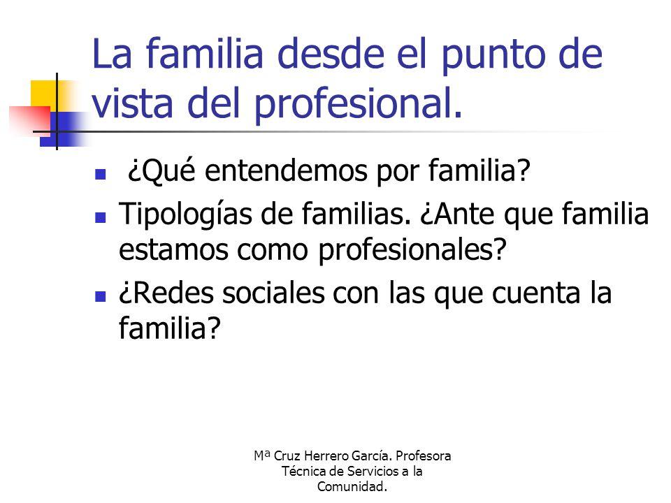 Mª Cruz Herrero García. Profesora Técnica de Servicios a la Comunidad. La familia desde el punto de vista del profesional. ¿Qué entendemos por familia