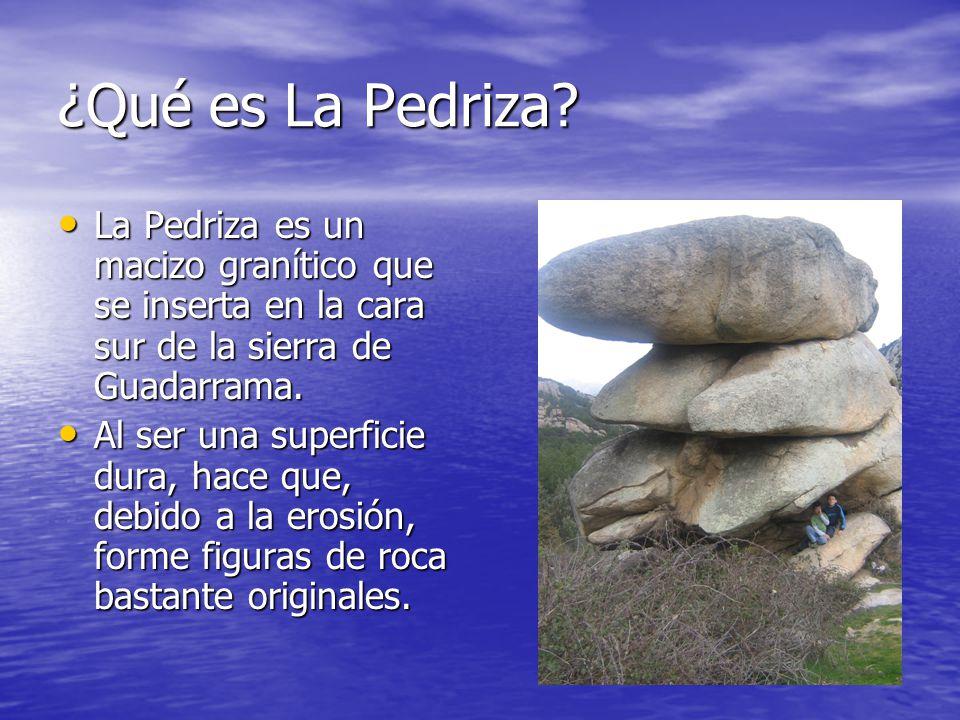 ¿Qué es La Pedriza? La Pedriza es un macizo granítico que se inserta en la cara sur de la sierra de Guadarrama. La Pedriza es un macizo granítico que