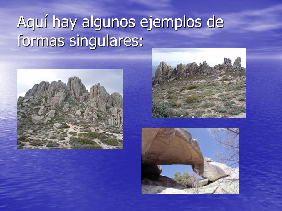 Aquí hay algunos ejemplos de formas singulares: