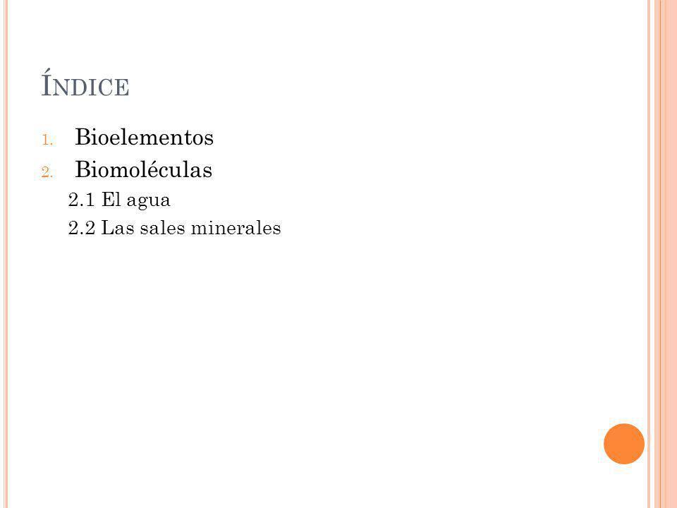 Í NDICE 1. Bioelementos 2. Biomoléculas 2.1 El agua 2.2 Las sales minerales