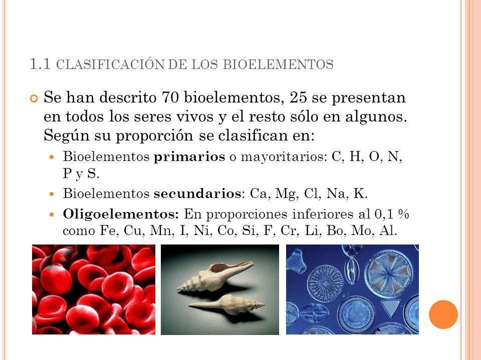 1.1 CLASIFICACIÓN DE LOS BIOELEMENTOS Se han descrito 70 bioelementos, 25 se presentan en todos los seres vivos y el resto sólo en algunos. Según su p