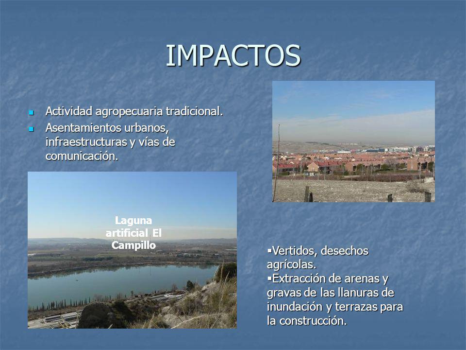 IMPACTOS Actividad agropecuaria tradicional.Actividad agropecuaria tradicional.