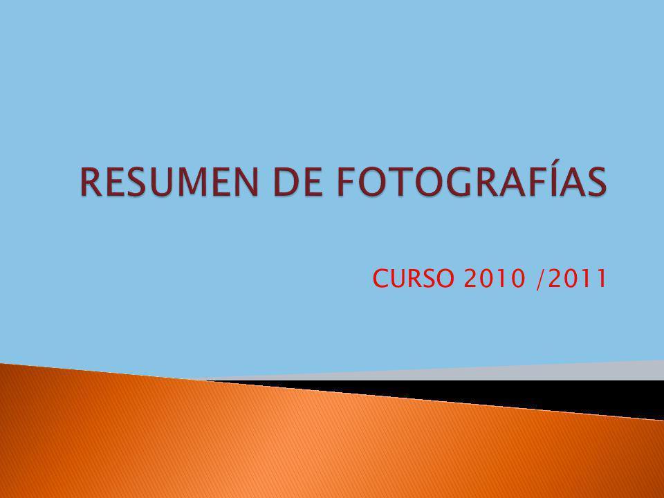 CURSO 2010 /2011