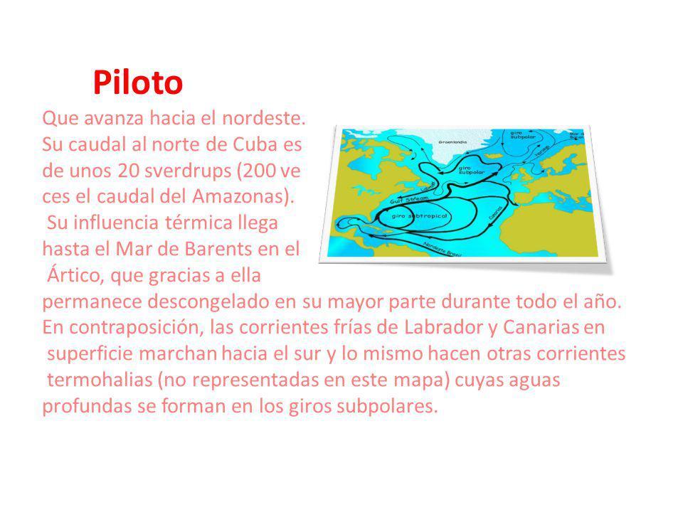 Piloto Que avanza hacia el nordeste. Su caudal al norte de Cuba es de unos 20 sverdrups (200 ve ces el caudal del Amazonas). Su influencia térmica lle