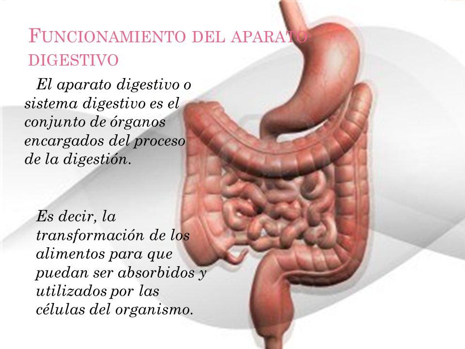 F UNCIONAMIENTO DEL APARATO DIGESTIVO El aparato digestivo o sistema digestivo es el conjunto de órganos encargados del proceso de la digestión. Es de