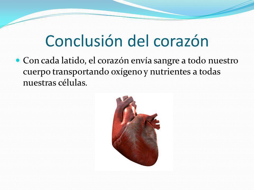 Conclusión del corazón Con cada latido, el corazón envía sangre a todo nuestro cuerpo transportando oxígeno y nutrientes a todas nuestras células.
