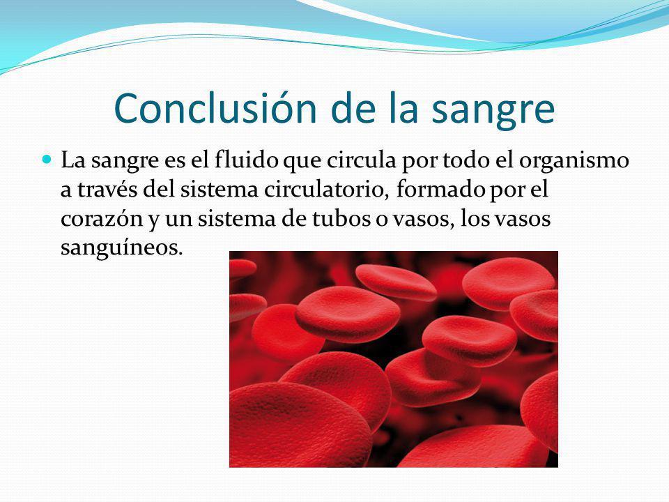 Conclusión de la sangre La sangre es el fluido que circula por todo el organismo a través del sistema circulatorio, formado por el corazón y un sistem