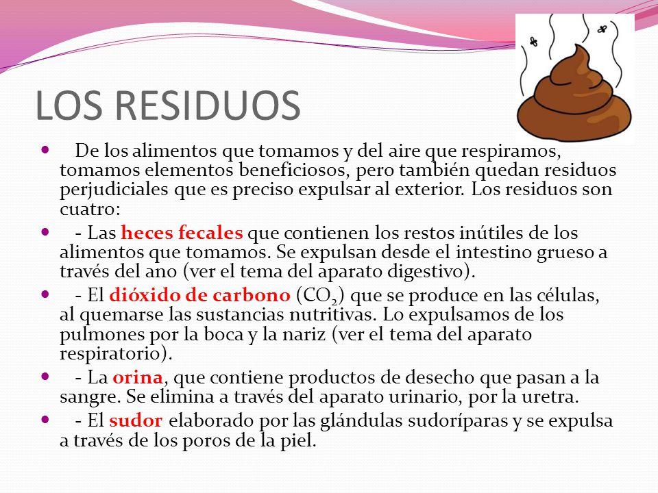 LOS RESIDUOS De los alimentos que tomamos y del aire que respiramos, tomamos elementos beneficiosos, pero también quedan residuos perjudiciales que es