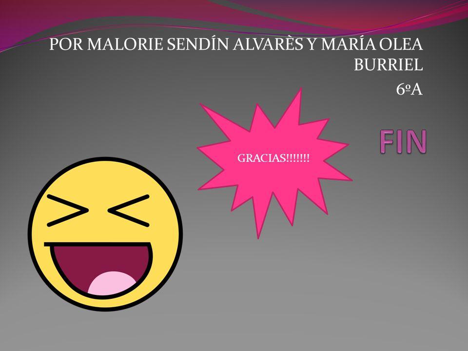 GRACIAS!!!!!!! POR MALORIE SENDÍN ALVARÈS Y MARÍA OLEA BURRIEL 6ºA