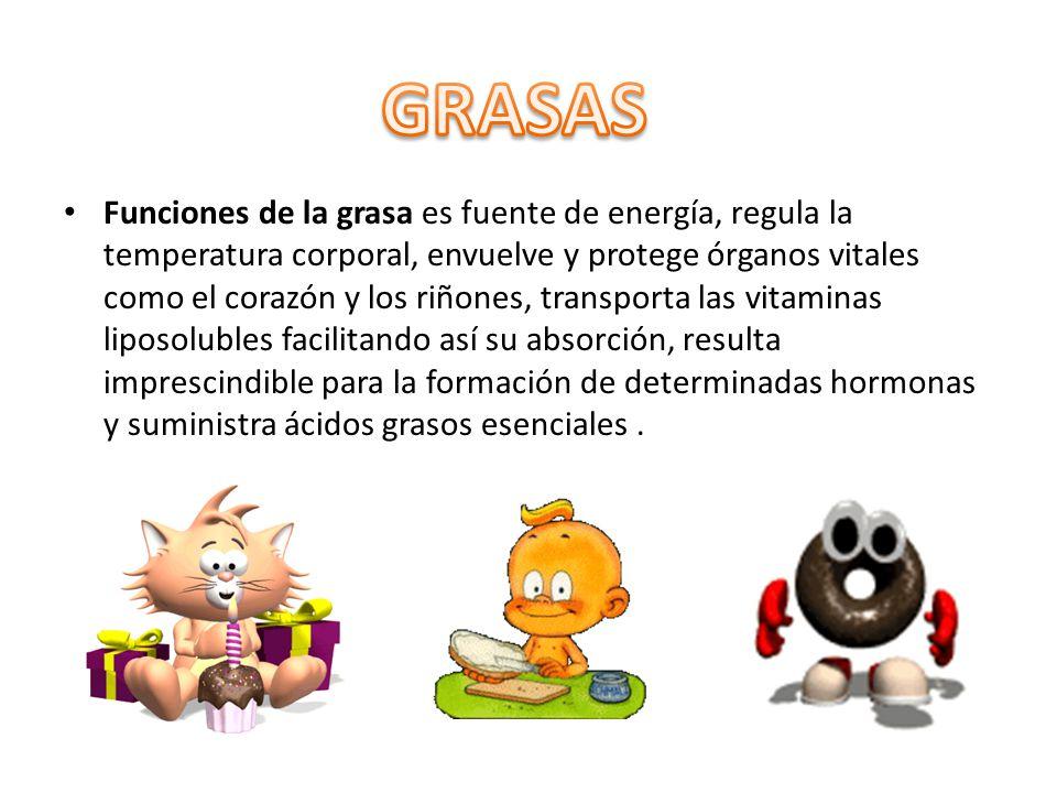 Funciones de la grasa es fuente de energía, regula la temperatura corporal, envuelve y protege órganos vitales como el corazón y los riñones, transpor