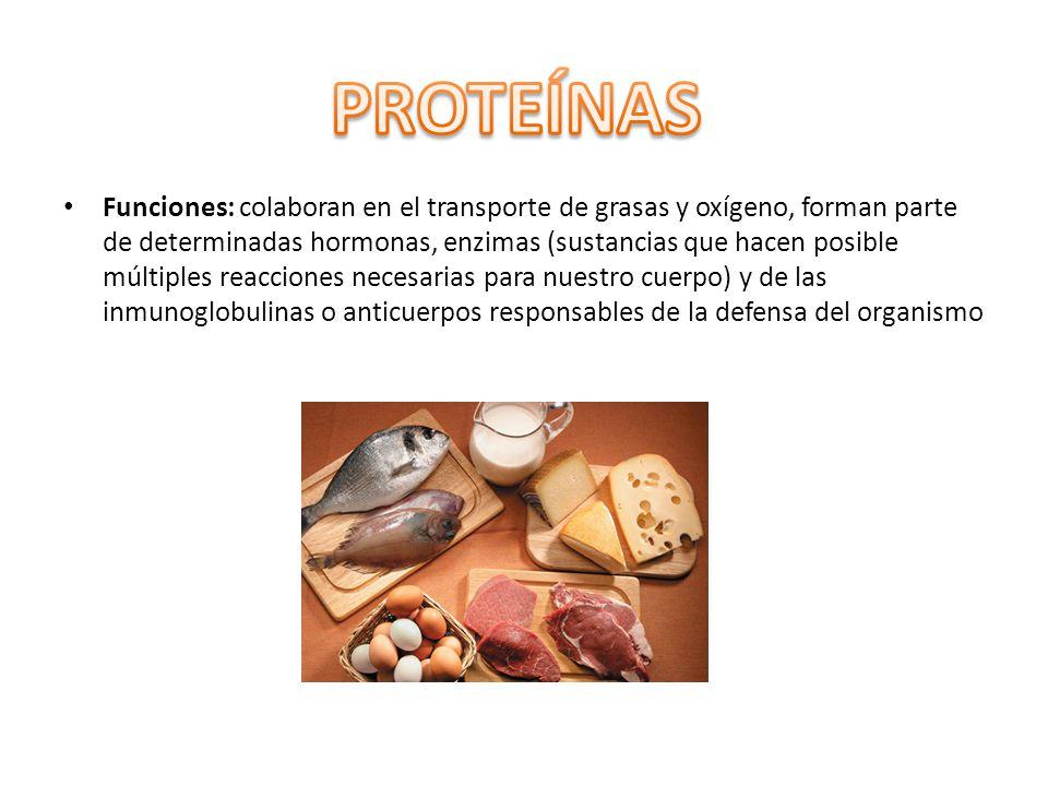 Funciones: colaboran en el transporte de grasas y oxígeno, forman parte de determinadas hormonas, enzimas (sustancias que hacen posible múltiples reac