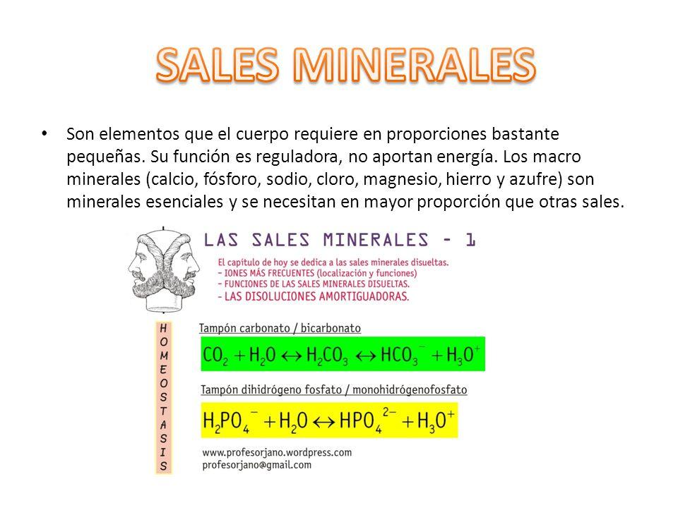 Son elementos que el cuerpo requiere en proporciones bastante pequeñas. Su función es reguladora, no aportan energía. Los macro minerales (calcio, fós