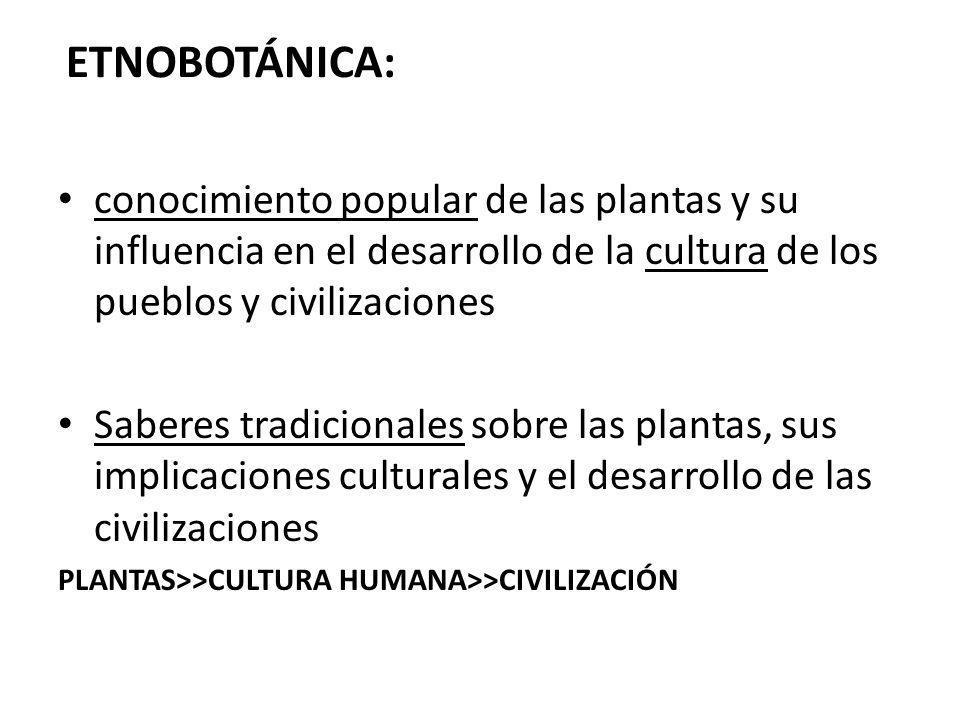 ETNOBOTÁNICA: conocimiento popular de las plantas y su influencia en el desarrollo de la cultura de los pueblos y civilizaciones Saberes tradicionales sobre las plantas, sus implicaciones culturales y el desarrollo de las civilizaciones PLANTAS>>CULTURA HUMANA>>CIVILIZACIÓN