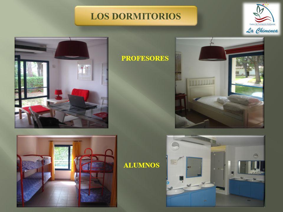 LOS DORMITORIOS ALUMNOS PROFESORES