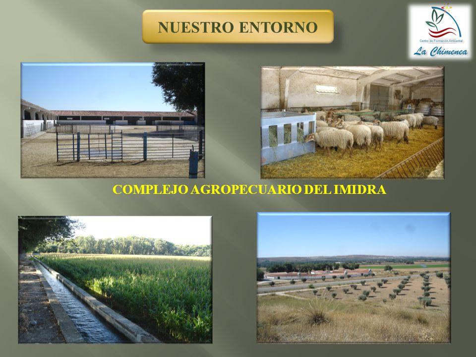 NUESTRO ENTORNO COMPLEJO AGROPECUARIO DEL IMIDRA