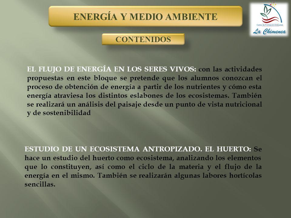 ENERGÍA Y MEDIO AMBIENTE CONTENIDOS EL FLUJO DE ENERGÍA EN LOS SERES VIVOS: con las actividades propuestas en este bloque se pretende que los alumnos