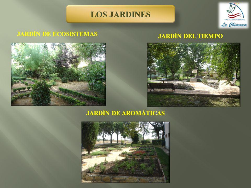 LA CASETA DEL FUTBOLÍNEL ÁRBOL CUEVA JARDÍN DE JUEGOS ZONAS DE JUEGO LAS PISTAS DEPORTIVAS
