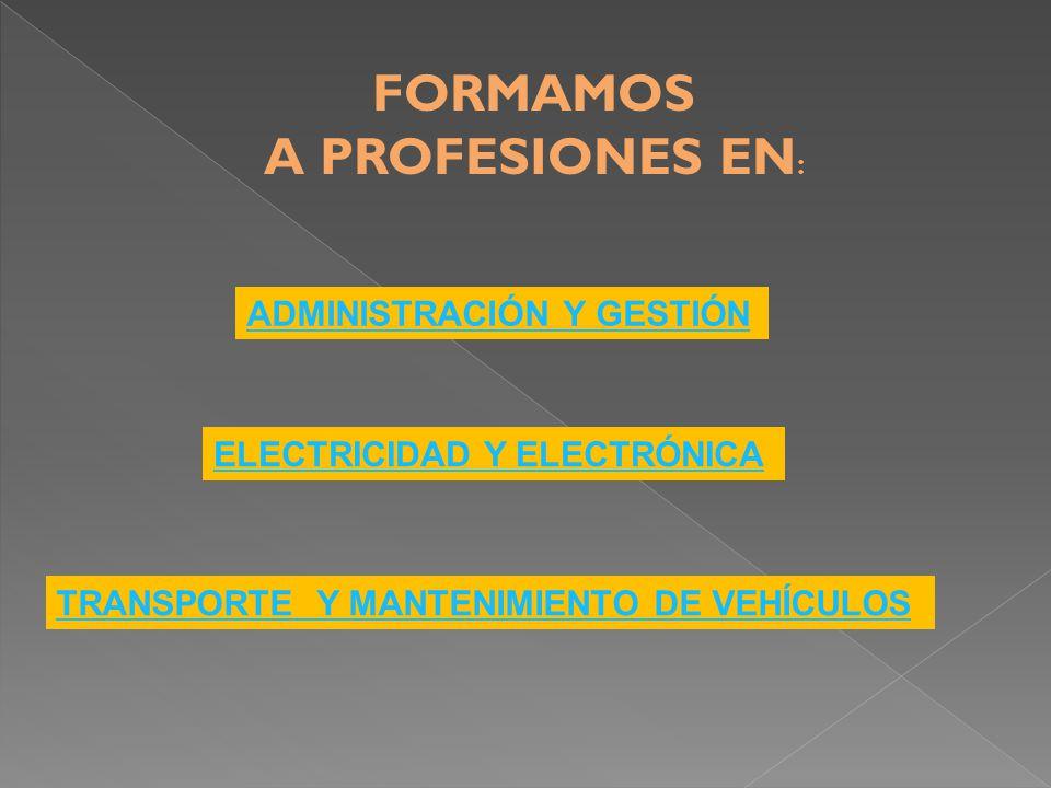 FORMAMOS A PROFESIONES EN : ADMINISTRACIÓN Y GESTIÓN TRANSPORTE Y MANTENIMIENTO DE VEHÍCULOS ELECTRICIDAD Y ELECTRÓNICA