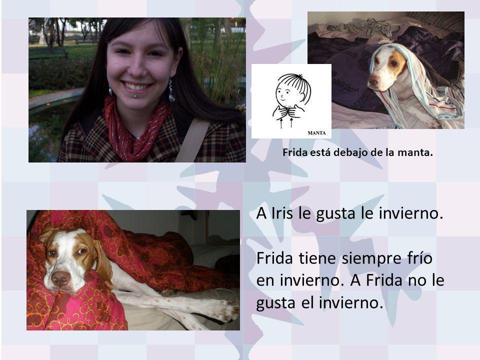 A Iris le gusta le invierno. Frida tiene siempre frío en invierno. A Frida no le gusta el invierno. Frida está debajo de la manta.