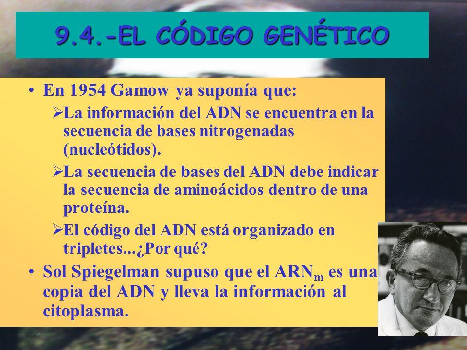 9.4.-EL CÓDIGO GENÉTICO G. Gamow: Big-Bang y el sentido del humor En 1954 Gamow ya suponía que: La información del ADN se encuentra en la secuencia de
