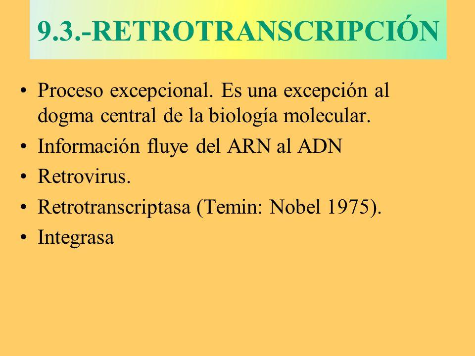 9.3.-RETROTRANSCRIPCIÓN Proceso excepcional. Es una excepción al dogma central de la biología molecular. Información fluye del ARN al ADN Retrovirus.