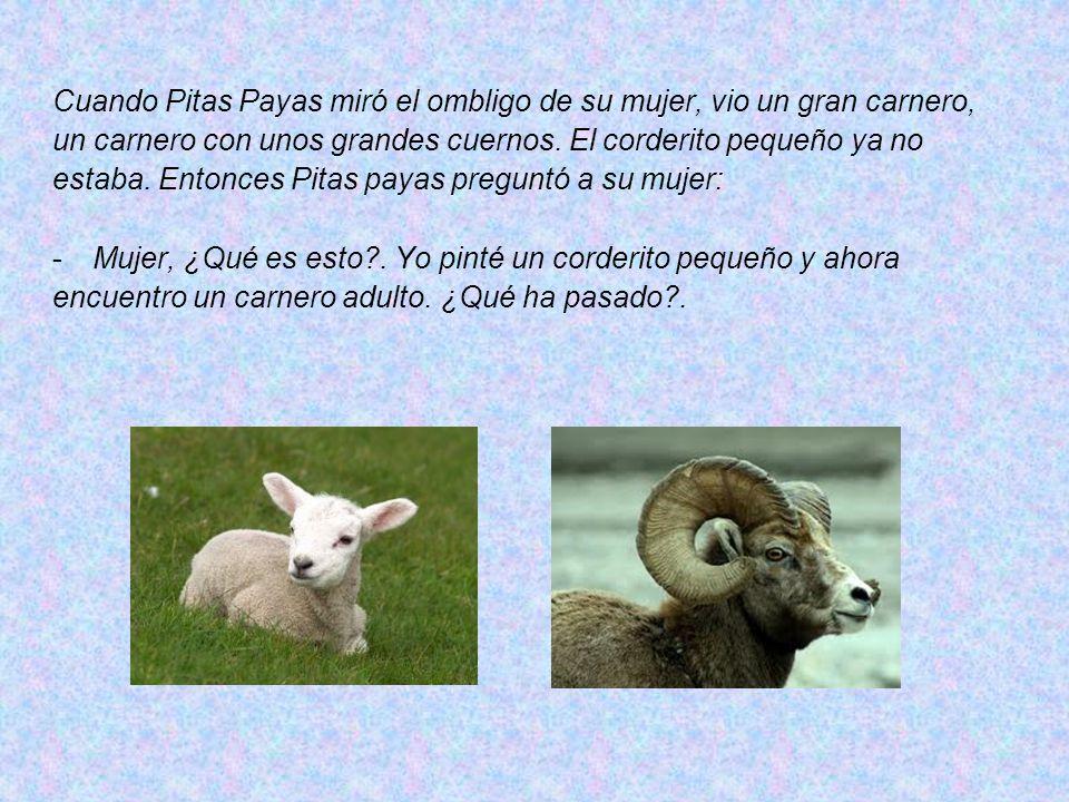 Cuando Pitas Payas miró el ombligo de su mujer, vio un gran carnero, un carnero con unos grandes cuernos.